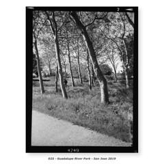 Guadalupe River Park (Godfrey DiGiorgi) Tags: fujigs645s hp5 bw filmlab firstroll landscape ride scan testing sanjose california usa