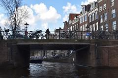DSC_0512 - Copie (elisa.savio) Tags: amsterdam trip travel voyage landscape bike photographer nikkor nikon