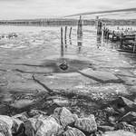 Icy Potomac thumbnail