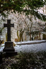 Beauty Beyond The Grave (Missy Jussy) Tags: beautybeyondthegrave denshaw church grave gravestones graveyard cemetery grass snow trees sunlight path winter february 2019 northwest england saddleworth lancashire outdoor outside shadows light canon5dmarkll canon5d canoneos5dmarkii 50mm ef50mmf18ll ef50mm canon50mm fantastic50mm primelens fixedfocallength canon