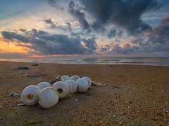 IMG_6889 ~ senandung pagi (alongbc) Tags: sunrise seascape shoreline coast pantaisenok bachok cloud sea sky kelantan malaysia travel place trip canon eos700d canoneos700d canonlens 10mm18mm wideangle