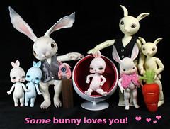Which one? (bentwhisker) Tags: dolls bjd resin anthro rabbit bunny hare valentine tokissi toki conarium fingertipdreamland soom neoangelregion tokki goodreau scrappy bella 5814