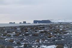 Sea formations and lava field (Bird Aficionado Stan) Tags: iceland southwesticeland blacksand blacksandbeach lavafield vik