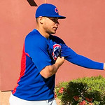 Cubs Spring Training 2019 Gallery 2