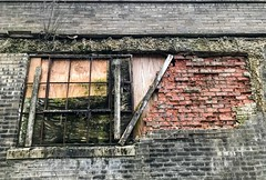 Broken and Boarded Up (traceyellen) Tags: broken boardedup brick glass abandoned wood old mossy