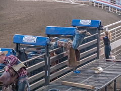 0631-J20 - Yellowstone - Cody-1808161849 (Chouettes de Crolles) Tags: 2018usa 2018usaj20yellowstonecody cody lieux usa vacancesété wyoming étatsunis us