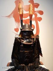 Carcassonne - Musée des Beaux-Arts (Fontaines de Rome) Tags: aude carcassonne musée beaux arts exposition samouraï art symbolisme japon armure casque masque cuirasse japan samurai 日本 美術 侍 象徴主義