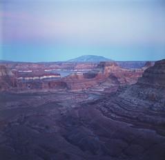 Dec 22 (Jeremy O'Clair) Tags: utah landscape glencanyon alstrompoint film mediumformat yashicamat124g fujifilmnpc160