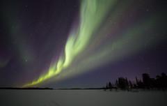 Korpikartano aurora 7.3.2019 a (Hotel Korpikartano) Tags: hotelkorpikartano northernlights auroraborealis revontulet lapland finland inarilapland