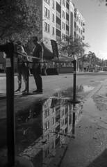 Tall Reflection (PositiveAboutNegatives) Tags: leica slr leicaflex leicaflexsl 35mm 35mmelmarit type3 11231 film analog yellowfilter bw blackandwhitefilm foma fomapan fomapan100 rodinal lakeworth florida rain puddle reflection