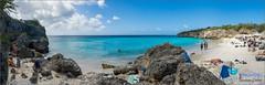 Kleine Knip - Curaçao