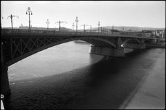 Мост Маргит (Natasha Buzina) Tags: budapest margitbridge danuberiver film bw blackandwhite olympusom пленка будапешт мостмаргит