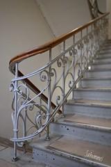 Aufwärts (Sockenhummel) Tags: 10 mecklenburgischestrase rudolfmossestrasse treppe treppenhaus staircase stairs escaliers architektur geländer railing handlauf