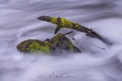 Spring Colors (NikonDigifan) Tags: motionblur moss creek water rock stick columbiarivergorge wahkeenawaterfall longexposure oregon pacificnorthwest nikond850 nikon nikon28300 mikegassphotography
