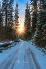 Sunset at Two Mile Creek (SimplyAmy74) Tags: sunset twomilecreek silvervalley exploring exploreidaho explore winter winterwonderland idaho idahostate iloveidaho idahome tracks december bluesky beautiful happiness