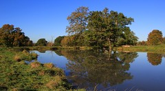 Charlecote Park Grounds - NT - Warwickshire  (13) (Richard Collier - Wildlife and Travel Photography) Tags: landscape englishlandscape charlecotepark nationaltrust warwickshire reflection water ty pret
