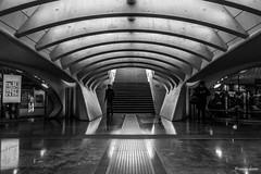 Luik, Station Liège-Guillemins. (What's Around) Tags: luik liege 1750mm trainstation stationliègeguillemins station