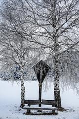 Gelide visioni - Freezing visions. (sinetempore) Tags: gelidevisioni freezingvisions neve snow freddo cold duealberi twotrees alberi trees panchina bench crocifisso crucifix rood croce gelo frozen plancadisopra trentino