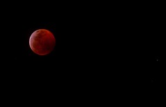 Blood moon and one star. (Kreative Capture) Tags: blood moon texas 1100 red wolf sky night star nikon d7100 noise