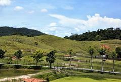 nosso belo Brasil (Ruby Ferreira ®) Tags: fence cerca cavalos horses landscape farm fazenda ontheroad naestrada trees clouds sky céu nuvens árvores montanhas montains