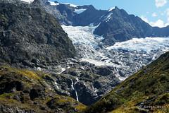 20190207-27-Rob Roy Glacier (Roger T Wong) Tags: 2019 nz newzealand robroyglacier rogertwong sel24105g sony24105 sonya7iii sonyalpha7iii sonyfe24105mmf4goss sonyilce7m3 southisland westmatukitukivalley bushwalk glacier hike landscape outdoors tramp trek walk
