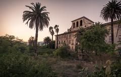 San Junipero (Dafne Op't Eijnde) Tags: abandoned decay decayed decaying italy sunset palmtress nikon sigma lostplace urbanexploring verlaten derelict verlassen