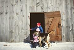 Family Day 2019 (jessalynn_sammons) Tags: shotoncanon canoncanada canon play farmlife countrylife country fun familyday family farmdog farmkids kids barn instagram ifttt