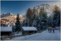 Winterspaziergang II (Karl Glinsner) Tags: landschaft landscape österreich austria oberösterreich upperaustria outdoors winter schnee snow trees bäume grünberg gmunden berge mountains