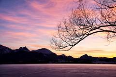 Sonnenuntergang am Hopfensee (anitalemmert) Tags: allgäu bayern hopfensee hopfenamsee alpen sonnenuntergang breitenberg bavaria alps lake canoneos700d canoneos canon sunrise eveningsun februar
