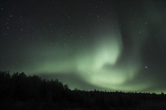 Meet Miss Aurora #3 (G-daddyArt) Tags: alaska fairbanks auroraborealis northernlights sun particles magneticfield photons sky stars trees canon50d