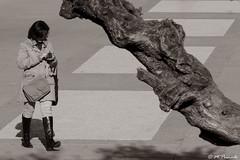 013748 - Madrid (M.Peinado) Tags: gente tronco plaza plazadeespaña madrid comunidaddemadrid españa spain 2019 febrerode2019 09022019 canon canonpowershotsx60hs copyright monocromático blancoynegro byn blackandwhite bw