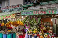 _V1A9419.jpg (DAVEBARTLETT2) Tags: vietnam saigon flowers flower market blooms seller stall shap