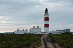 Point of Ayre Lighthouse (swissgoldeneagle) Tags: lighthouse pointofayrelighthouse d750 nikon nikon80400mmvr kionenyhayrey mannin crowndependency mann nikond750 croghaneyncrooin pointofayre ellanvannin isleofman britishisles ayre im