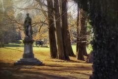 Noble Statue on a Family Gravesite IMG_8621_edit (ForestPath) Tags: springgrovecemetery cincinnati ohio statue grave december cypressneedlesontheground sunshine exhilaratingday