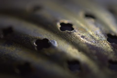 "MacroMonday ""Hole"" (mckernanmargaret) Tags: macromonday hole metal spoon macromondays holes"