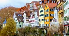 Auf Sommer Farben getrimmt. Neckarfront Tübingen im Februar 2019 (eagle1effi) Tags: 80 mm zoom beim panorama machen canon powershot sx70 hs canonpowershotsx70hs pano reference sx70best sx70hs eagle1effi