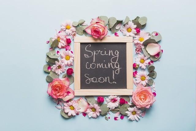 Обои цветы, фон, розы, лепестки, бутоны, декор картинки на рабочий стол, раздел цветы - скачать