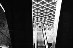Progressione geometrica (encantadissima) Tags: venezia veneto scala mobile aeroporto bienne people street geometrie prospettive