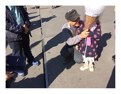 170923_113720_iphone5s_antwerpen_theaterplein_1/8 (A Is To B As B Is To C) Tags: aistobasbistoc b belgië belgium antwerpen antwerp theaterplein exoticmarket vogelenmarkt markt people tourist icecream shadow street streetphotography iphone5s phone phonography color
