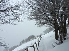 DSCN2091 (lele GENS) Tags: uoei montagna tesoro