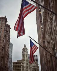 Chicago what's up? ⠀⠀⠀⠀⠀⠀⠀⠀⠀ ⠀⠀⠀⠀⠀⠀⠀⠀⠀ ⠀⠀⠀⠀⠀⠀⠀⠀⠀ ⠀⠀⠀⠀⠀⠀⠀⠀⠀ ⠀⠀⠀⠀⠀⠀⠀⠀⠀ ⠀⠀⠀⠀⠀⠀⠀⠀⠀ ⠀⠀⠀⠀⠀⠀⠀⠀⠀ ⠀⠀⠀⠀⠀⠀⠀⠀⠀ ⠀⠀⠀⠀⠀⠀⠀⠀⠀ ⠀⠀⠀⠀⠀⠀⠀⠀⠀ #travel #wanderlust #traveling #travelgram #instatravel #travelusa #america #urbanphotography #streetstyle #streetphotography #streetsho (AJP.photography) Tags: ifttt instagram chicago what's up ⠀⠀⠀⠀⠀⠀⠀⠀⠀ travel wanderlust traveling travelgram instatravel travelusa america urbanphotography streetstyle streetphotography streetshots urbanshots mynikonlife nikond3400 nikon nikonshot nikonphoto moodygram nikonusa moodytoning agameoftones moodytones artofvisual shotzdelight