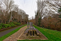 1916 GARDEN OF REMEMBRANCE [STATION ROAD LEIXLIP]-148220 (infomatique) Tags: 1916 memorial 1916gardensofremembrance leixlip countykildare stationroad easterrising williammurphy infomatique fotonique streetsofireland sony a7riii sigma 14mmlens wideanglelens