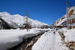 Snow logged Chitkul. (draskd) Tags: chitkul sangla sanglavalley himachalpradesh hp kinnaur draskd landscape snow hotel tourism snowlogged bluesky sky india