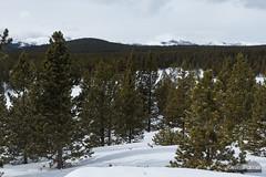 Kessler's Crook (kevin-palmer) Tags: bighornmountains bighornnationalforest wyoming nikond750 tamron2470mmf28 snow snowy winter cold loafmountain bighornpeak clouds
