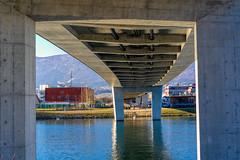 Aare Bridge (Bephep2010) Tags: 2019 7markiii aare aarebrücke alpha bergkette bridge brücke fluss ilce7m3 jura kofmehl sel55f18z schweiz solothurn sony switzerland winter mountainrange river ⍺7iii kantonsolothurn ch