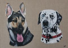 Chiens de mes beaux parents (Kalisan12) Tags: animalpainting peintureacrylique acrylicpainting dogpainting portraitchien bergerallemand dalmatien kalipeinture peintureanimalière