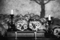 The Crucifix (Fotos4RR) Tags: cross crucifix ossuary skulls candles chapel blackandwhite bw kreuz kruzifix beinhaus schädel schwarzweiss sw hallstatt salzkammergut michaelskapelle michaelschapel shadow schatten schwarzweis book buch