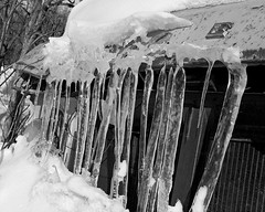Old and cold (N.Clark) Tags: iciclesonoldcar desertedcar oldandcold cold winter frozen ice blackandwhitephotography nature manitoba canada snowandice