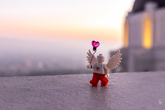 Love Angel (Ballou34) Tags: 2018 7dmark2 7dmarkii 7d2 7dii afol ballou34 canon canon7dmarkii canon7dii eos eos7dmarkii eos7d2 eos7dii flickr lego legographer legography minifigures photography stuckinplastic toy toyphotography toys losangeles californie étatsunis us stuck in plastic love angel heart wings