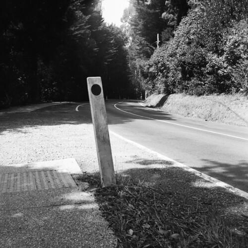 Road guide post